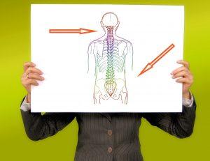 imagen de hombre sujetando un cuadro de columna vertebral