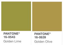 Pantone verde 16-0543