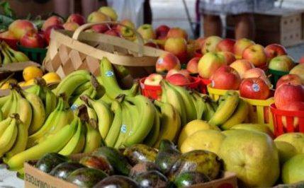 Frutas para dieta cetosisgénica