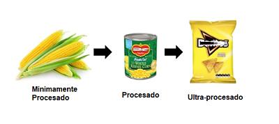TIPO DE ALIMENTO PROCESADO